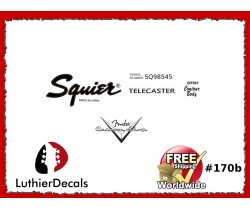 Squier Telecaster Guitar Decal #170b