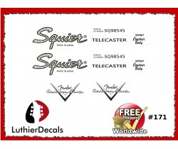 Squier Telecaster Guitar Decal #171