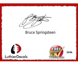 Guitar Players Bruce Springsteen Signature Guitar Decal 203b